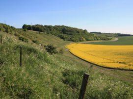 prace nad ułatwieniem obrotu ziemią rolną z korzyścią dla Inwestorów