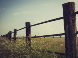 stwierdzenie nabycia spadku a zasiedzenie